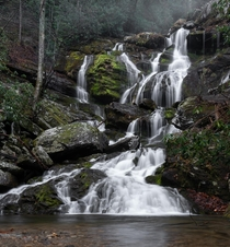 Catawba Falls of Pisgah National Forest yesterday on a foggy morning  IG endearingjourney