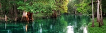 Central Floridas Spring-Fed Ichetucknee River at Dawn