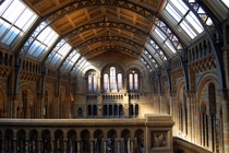 Central Hall of the Natural History Museum London
