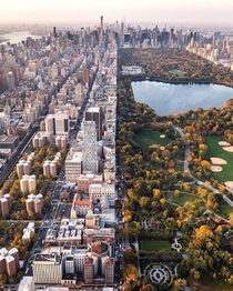 Central Park and Manhattan New York