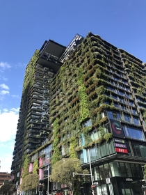 Central Park colloquially known as plant building - Sydney Australia