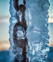 Chain Frozen in Ice   x