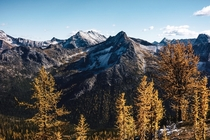 Chalen mountain range at Cutthroat Pass WA in the fall Golden Larches in full effect