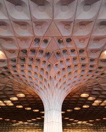 Chhatrapati Shivaji International Airport Mumbai  x