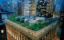 Chicago City Halls Green Roof