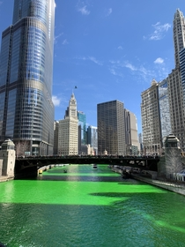 Chicago IL on St Patricks Day