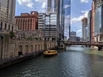Chicago IL USA - River Taxi in July