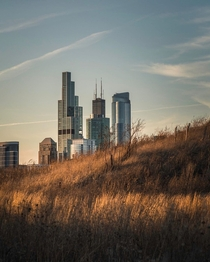Chicago prairie