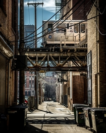 Chicagos back alleys are the best on earth