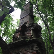 Chimney found wandering in the woods