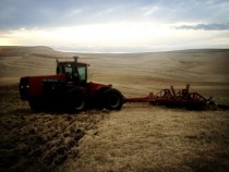 Chiseling wheat stubble in the Palouse  OC