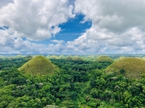 Chocolate Hills Bohol Philippines Ive never seen so many hills in one place OC x