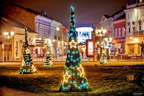 Christmas in Novi Sad Serbia  photo by Aleksandar Milutinovi
