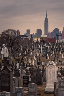 City of the Dead - Calvary Cemetery New York City