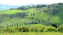Classical Italian agricultural landscape