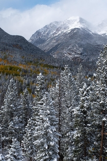 Clearing winter storm in Rocky Mountain National Park