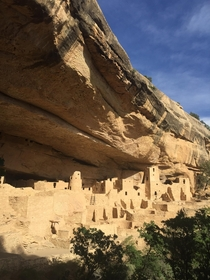 Cliff Palace - Mesa Verde National Park  iPhone