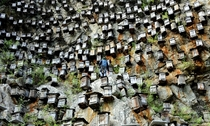 Cliffside apiculture beekeeping in China