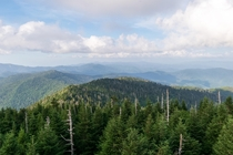 Clingmans Dome Smoky Mountains TN