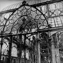Close-up of old abandoned glasshouse with broken panes of glass and ornamental iron wrought-work Florence Italy