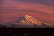 Closing out October with Mt Rainier