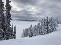 Clouds above and belowStevens Pass WA