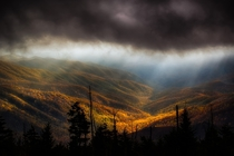 Clouds at Clingmans Dome by Richard Barrow