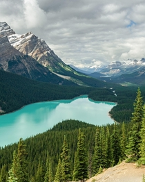 Clouds Form a Ceiling Over the Valley Above Peyto Lake Alberta Canada