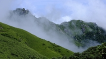 Clouds roll into Mt Miyanoura-dake Yakushima Japan Setting of Princess Mononoke
