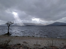 Cloudy Banks of Loch Lomond Scotland