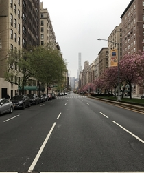 Cnr th amp Park Ave New York City Rush hour in the depth of COVID-