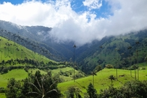 Cocora Valley Colombia The real Jurassic Park home to the tallest palm trees in the world