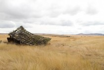 Collapsed Barn in Eastern Oregon OC