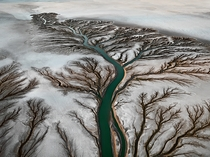 Colorado River Delta Baja Mexico  by Edward Burtynsky