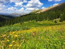 Colorful Colorado living up to its name Arapaho National Forest Copper Mountain CO United States