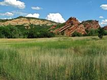 Colorful grassland Roxborough State Park Colorado