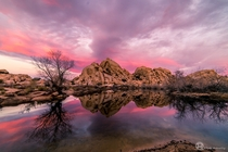 Colorful morning at Barker Dam in Joshua Tree National Park CA