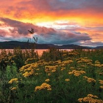 Colorful Sunset - Campbellton New Brunswick
