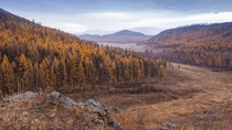 Colors of Autumn in Mongolias Khan Khetii National Park  By Stefan Cruysberghs