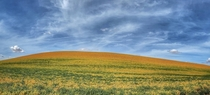 Colors of the Palouse in Eastern Washington  IG dennisvanderlip