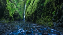 Columbia River Gorge National Scenic Area - Oneonta Gorge Trail x