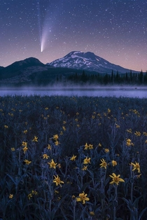 Comet Neowise over a field of late season wildflowers Deschutes County Oregon