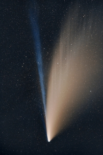 Comet NEOWISE shortly before setting under the horizon in Eldorado National Forest California