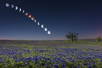 Composite of Blood Moon Texas  by Mike Menzeul