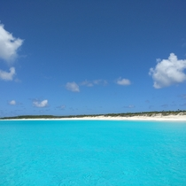 Conception Island in the Bahamas Aka Paradise