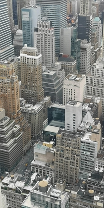 Concrete jungle New York
