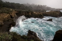 Contrawave at Point Lobos CA