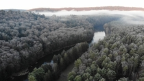 Cook Forest State Park PA Thanksgiving Weekend early morning F Trees Covered with frost Clarion River
