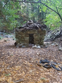 Cool little brick house in the forest of Univeristy of California Santa Cruz Abandoned by humans but inhabited by elves
