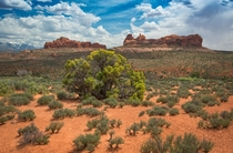 Cool roadside view at Arches National Park in Utah - x